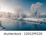 beautiful winter wonderland... | Shutterstock . vector #1201299220