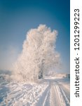beautiful winter wonderland... | Shutterstock . vector #1201299223