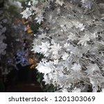 white leaf design elements for... | Shutterstock . vector #1201303069