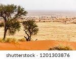 landscape at tsondab valley... | Shutterstock . vector #1201303876