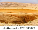 landscape at tsondab valley... | Shutterstock . vector #1201303879