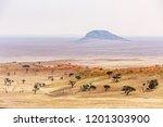 landscape at tsondab valley... | Shutterstock . vector #1201303900