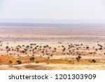 landscape at tsondab valley... | Shutterstock . vector #1201303909
