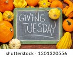Small photo of Giving Tuesday - white chalk handwriting on a slate blackboard surrounded by winter squash and gourds
