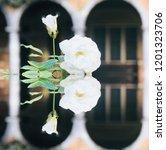 white specular roses | Shutterstock . vector #1201323706