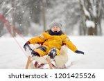 little boy enjoying a sleigh...   Shutterstock . vector #1201425526