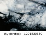 abstract hand painted black and ... | Shutterstock . vector #1201530850