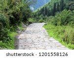 historic jungle trail  | Shutterstock . vector #1201558126