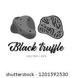 black truffle mushroom  cut... | Shutterstock .eps vector #1201592530