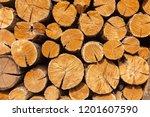 dry oak firewood stacked in a... | Shutterstock . vector #1201607590