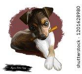 majorca ratter puppy watercolor ...   Shutterstock . vector #1201628980