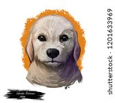 labrador retriever puppy form...   Shutterstock . vector #1201633969