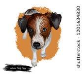 labrador husky puppy small pet...   Shutterstock . vector #1201634830