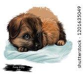kunming wolfdog chinese dog...   Shutterstock . vector #1201635049