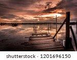 landscape of florida beach  u.s.... | Shutterstock . vector #1201696150