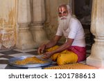 jaipur  india   march 13  holy... | Shutterstock . vector #1201788613