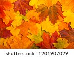 fall colored leaves background... | Shutterstock . vector #1201907029