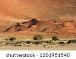panoramic view of the ref dunes ... | Shutterstock . vector #1201951540