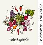 vegetable isolated hand drawn... | Shutterstock .eps vector #1201978786
