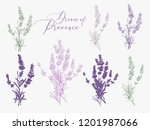 lavender illustration with... | Shutterstock .eps vector #1201987066
