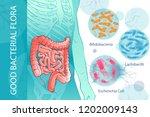 diagram illustration of the... | Shutterstock .eps vector #1202009143