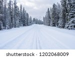 snowy forest road in the... | Shutterstock . vector #1202068009