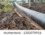 construction of oil pipeline... | Shutterstock . vector #1202070916