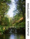 small waterfall in a creek... | Shutterstock . vector #1202072446