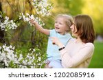 cute little girl in the arms of ...   Shutterstock . vector #1202085916