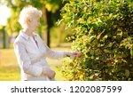 outdoor portrait of beautiful...   Shutterstock . vector #1202087599