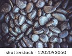 black pebbles  beautiful... | Shutterstock . vector #1202093050