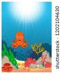 octopus  in beautiful... | Shutterstock .eps vector #1202104630