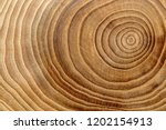 Wooden Background. Macro Wood...