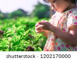 """""""nature knowledge"""" adorable a... 