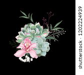 pink orchid  herbs  succulent... | Shutterstock .eps vector #1202224939
