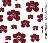 burgundy orchid phalaenopsis... | Shutterstock .eps vector #1202224960