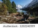 lake view in the mountains ... | Shutterstock . vector #1202240599