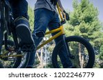 two bikers with his bicycles in ... | Shutterstock . vector #1202246779