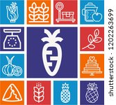 set of 13 food outline icons... | Shutterstock .eps vector #1202263699