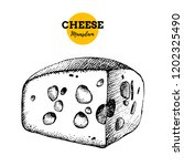 hand drawn sketch cheese... | Shutterstock .eps vector #1202325490