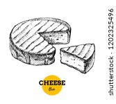 hand drawn sketch cheese brie... | Shutterstock .eps vector #1202325496