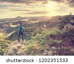 freelancer create nature photos.... | Shutterstock . vector #1202351533