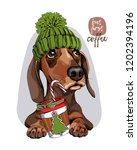 adorable dachshund dog in a... | Shutterstock .eps vector #1202394196
