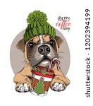 adorable boxer dog in a green... | Shutterstock .eps vector #1202394199