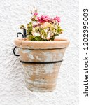pot with flowers | Shutterstock . vector #1202395003