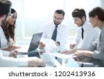 professional business team... | Shutterstock . vector #1202413936