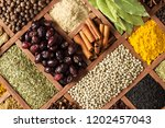 various condiments  with... | Shutterstock . vector #1202457043