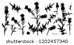 set of different silhouettes... | Shutterstock .eps vector #1202457340
