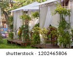 odessa  south of ukraine ... | Shutterstock . vector #1202465806