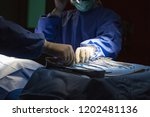 medical team of surgeon do at... | Shutterstock . vector #1202481136